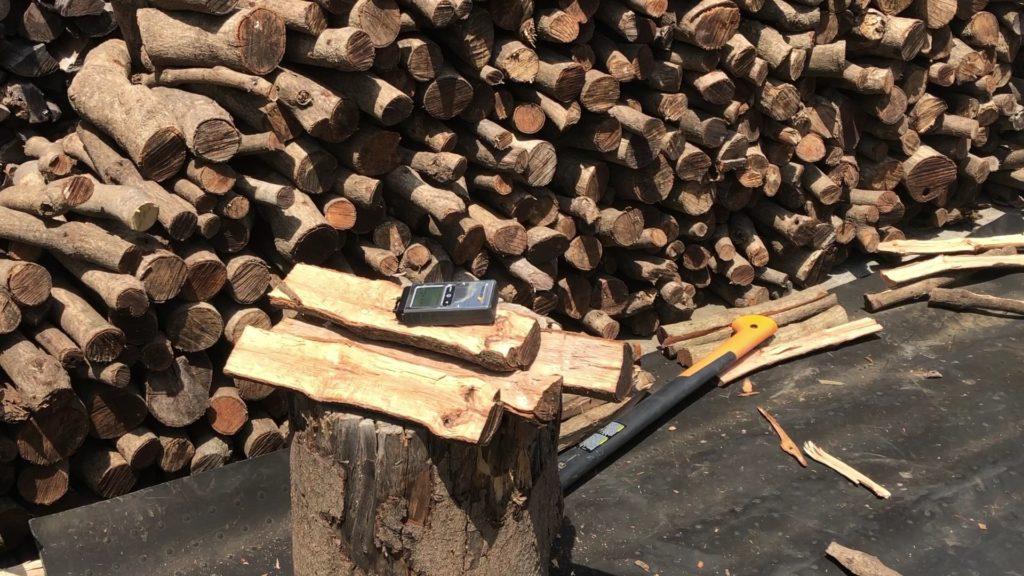 枝の水分測定